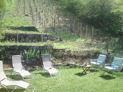 le jardin dans les vignes