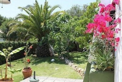 Von der Terrasse in den Garten