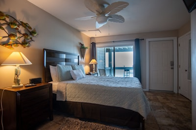 Newly remodeled bedroom on first (ground) level; queen bed
