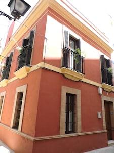 Bonita casa del siglo 18 en el centro historico de Sevilla con terraza y WIFI
