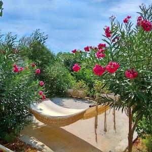 Chrissi Island, Lasithi, Crete, Greece