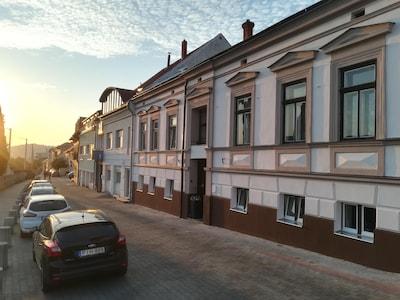 Futo Laszlo Pal Museum, Harkany, Baranya, Hungary