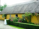 The Cottage in bloom