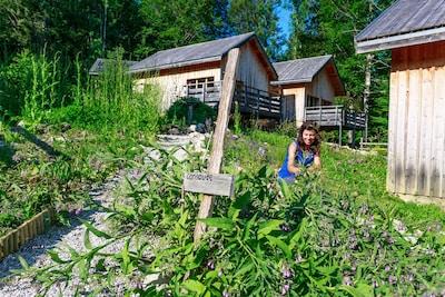 Le jardin des plantes médicinales et culinaires autour des éco chalets