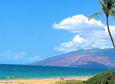 And don't forget the our wonderful Kamaole beachebeaches for perfect relaxation!