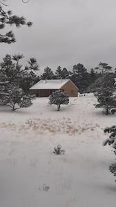 Snowstorm 031421!