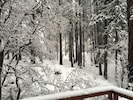 View from the deck on a snowy day.
