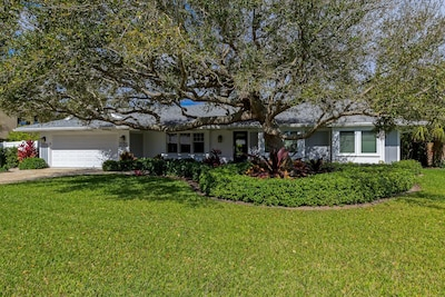 Exterior: shade provided by beautiful Live Oak in front yard.