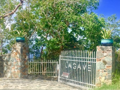 Front Gate at top of driveway...