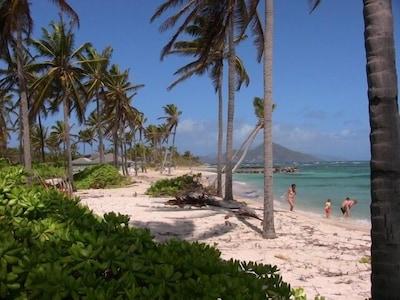 Our beach facing Nisbet Resort / St Kitts