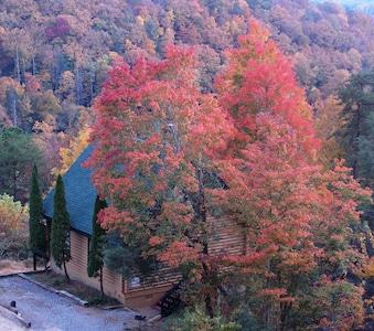 Spectacular Vista Cabin In October