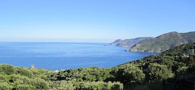Pino, Haute-Corse, France