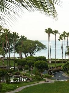 View from Lanai -