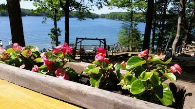 Spider Lake Log Cabin # 7 ~ Amazing waterfront views!