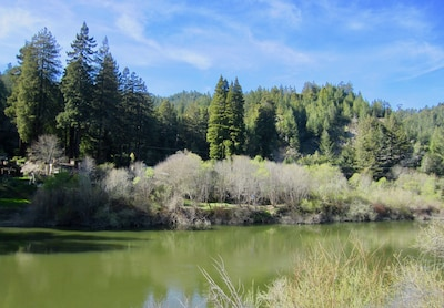 View of the Russian River from the deck.