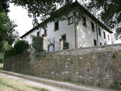 Ciliegi, Reggello, Toskana, Italien