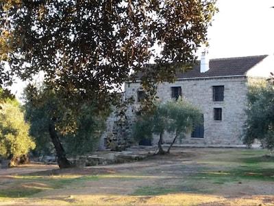Viña Las Olivas. Casa totalmente independiente situada en Andujar.