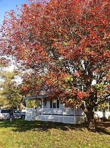 Fall in Harpswell