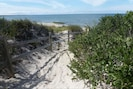 The 2 minute walk ends at the beach of Cape Cod Bay.
