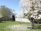 Gartenbereich FeWo zum entspannten Verweilen :-)