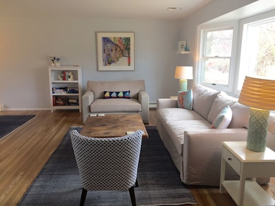 Spacious living room - couches pull out into sleeping spaces (queen and twin)