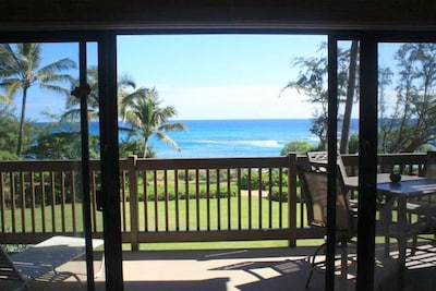 Your View from the living room, and off your Lenai.