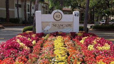 Welcome to Seascape Villas!