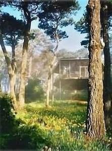 Hi House...Spring sunrise with a light fog.