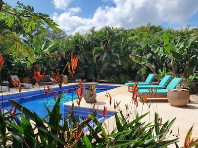 Serene and relaxing poolside surrounded by lush tropical folliage.