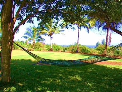 Enjoy ocean and mountain views under the shade of the trees on this hammock