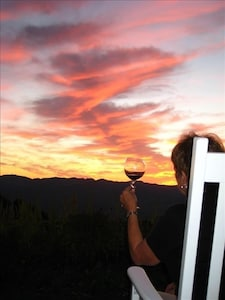 Ladera Vineyards, Angwin, California, United States of America