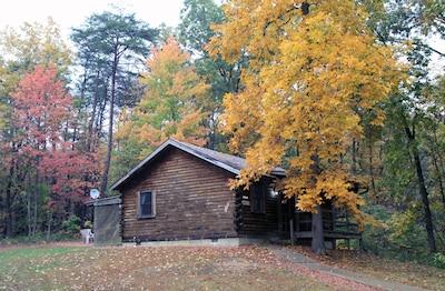 Blue Rose Cabins - Lincoln Log Cabin