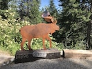 Hayden the Moose greets you at the top of the driveway!