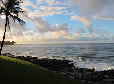 morning view from the lanai