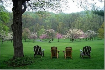 Spring: Front lawn view of the Pennypack  Creek