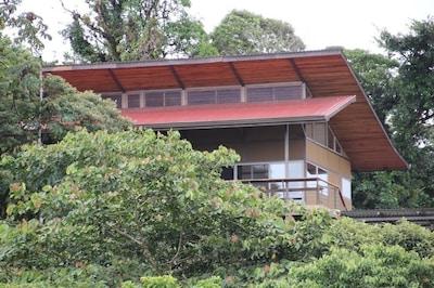 Casa Karon nestled in the treetops