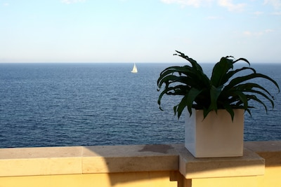 A breathtaking view from the terrace