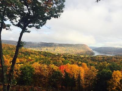 Autumn Foliage - Private Patio View