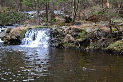 Beaver Waterfall