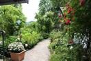 Willkommen im Garten Eden