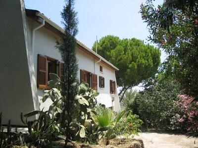 Bedroom wing with garden