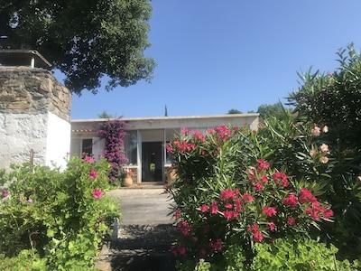 Vue depuis le jardin de la terrasse