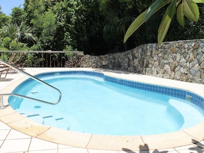 This view of the pool is from the house side of the pool.
