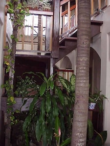 Our stunning 2-story foyer. A natural rainforest w/ palm trees welcome you.