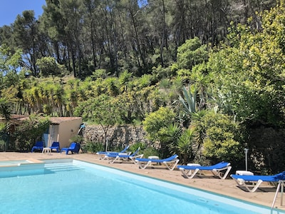 piscine 12x6 entourée de verdure bassin rénové en 2019