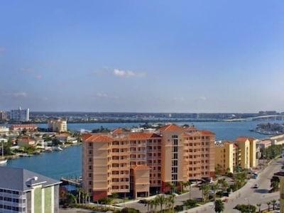 Ariel View