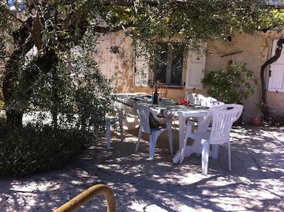 un coin à l'ombre sous l'olivier