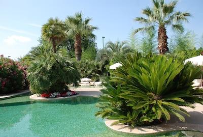 Exceptionnelle piscine-lagon