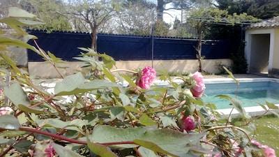 Entrée du jardin avec la piscine