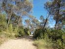 promenade sur la propriété